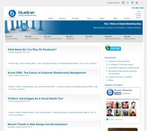 Blueliner Marketing Web Content Development