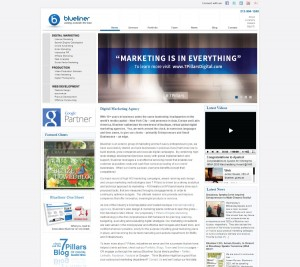 Manager - Content and User Experience, Blueliner Marketing, India